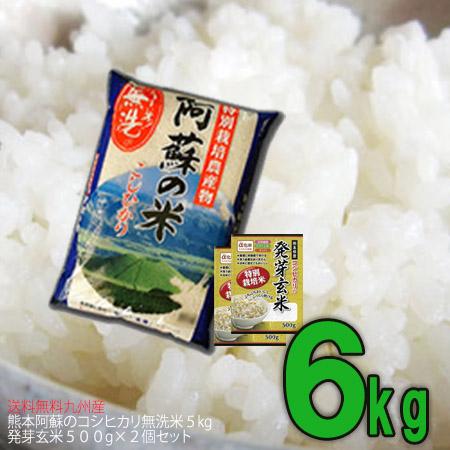 発芽玄米コシヒカリセット