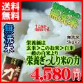 【送料無料】一般の白米より、栄養ぎっしり「米の力」10kg(5kg×2)