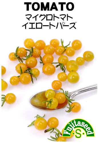 マイクロトマト イエロートパーズ