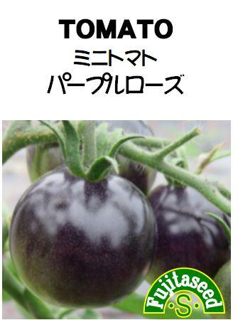 ミニトマト パープルローズ
