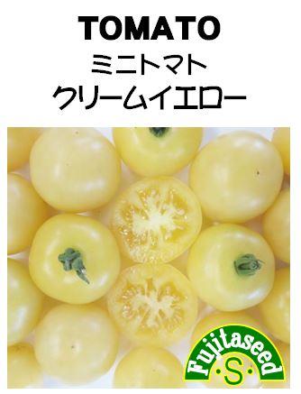 ミニトマト クリームイエロー