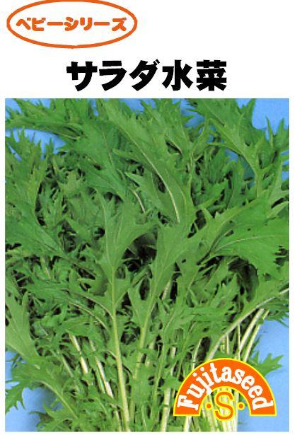 サラダ水菜