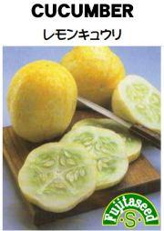 レモンきゅうり