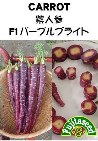 紫人参 F1 パープルブライト