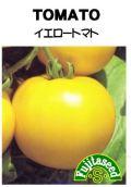 イエロートマト