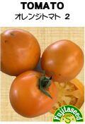 オレンジトマト2