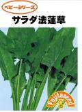 サラダ法蓮草