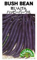 紫いんげん ハッピーパープル