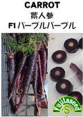 紫人参 F1 パープルパープル