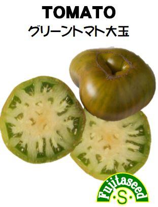 グリーントマト大玉