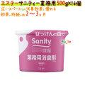 サニティ―業務用500g 室内用 せっけんの香り 4901070116089