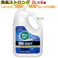 リセッシュ除菌EX消臭ストロング 業務用 2L×6本/ケース【業務用消臭剤】