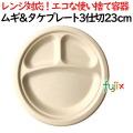 ムギ&タケプレート 3仕切 23cm 800枚(50×16)/ケース 使い捨て紙皿