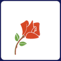 フジ紙コースター 薔薇