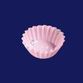 フジフィルムケース 5F ピンク (小箱)