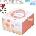 デコレーションケーキ箱 H120  TSD プラム 4.5号 100個/ケース O40120 ケーキ箱 業務用