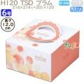 デコレーションケーキ箱 H120  TSD プラム 6号 100個/ケース O40140 ケーキ箱 業務用