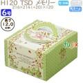 デコレーションケーキ箱 H120  TSD メモリー 6号 100個/ケース O40340 ケーキ箱 業務用
