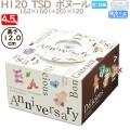 デコレーションケーキ箱 H120  TSD ボヌール 4.5号 100個/ケース O40420 ケーキ箱 業務用