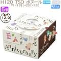 デコレーションケーキ箱 H120  TSD ボヌール 5号 100個/ケース O40430 ケーキ箱 業務用