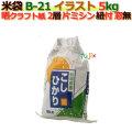 米袋 5kg 印刷 新潟こしひかり片ミシン 窓なし ひも付 晒クラフト袋 2層  200枚/ケース B-21