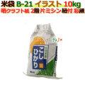 米袋 10kg 印刷 新潟こしひかり片ミシン 窓なし ひも付 晒クラフト袋 2層  200枚/ケース B-21