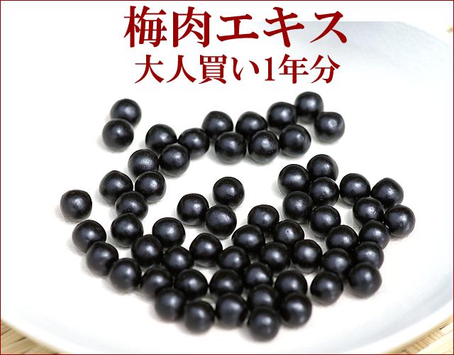 大人買い梅肉エキス粒・2年分/720g【180g×4個/約4320粒】