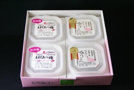 紀州南高梅干通販専門店のギフト品 梅あわせ3(フルーツ梅100g×2・はちみつ梅120g×2)
