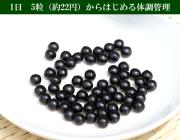 大人買い梅肉エキス粒・1年分/360g【180g×2個/約2160粒】