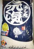 2615 【お米・福岡県産】 めし丸 元気つくし  5kg