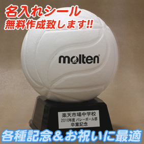 モルテン 記念品 バレーボール molten サインボール 【V1M500-W(白)】
