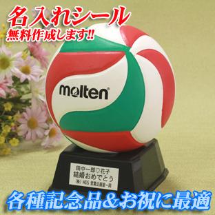 記念品♪バレーボール molten サインボール【V1M500】