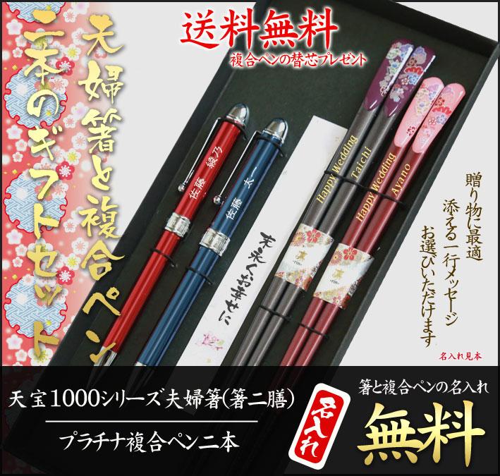 夫婦箸とペン2本のギフトセット高級箸天宝1000二膳とプラチナ複合ペン2本