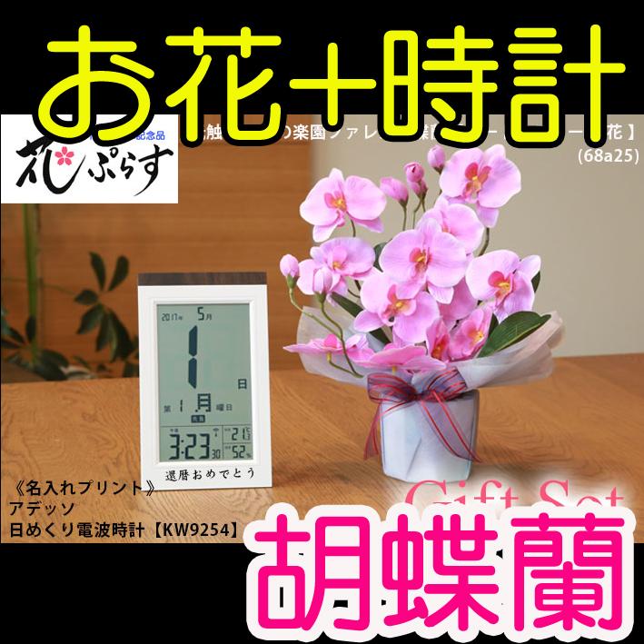 《新築祝い》花ぷらす《日めくり電波時計》ファレノ胡蝶蘭68A25-KW9254ギフトセット(時計名入れプリント)