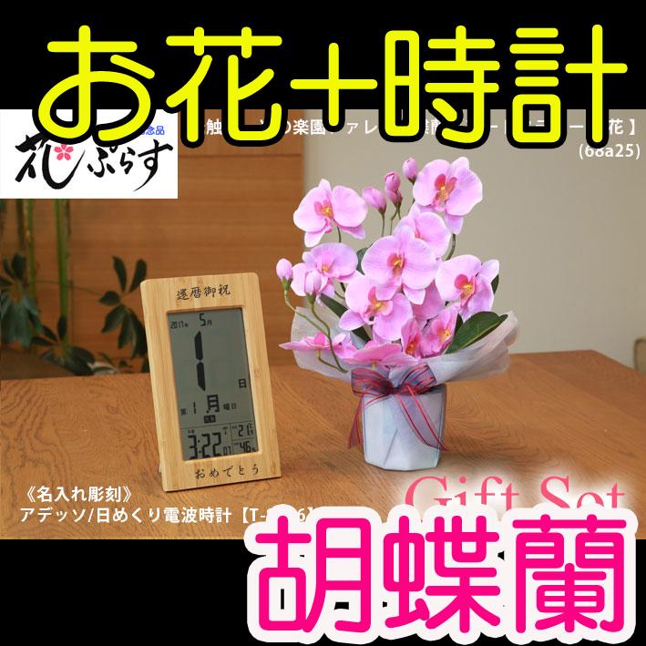 《還暦祝い》花ぷらす《竹の日めくり電波時計》ファレノ胡蝶蘭68a25-T-8656ギフトセット(電波時計名入れ彫刻)