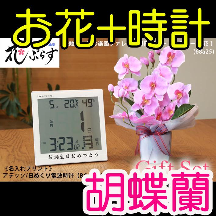 《新築祝い》花ぷらす《日めくり電波時計》ファレノ胡蝶蘭68a25-bc8656ギフトセット(時計名入れプリント)