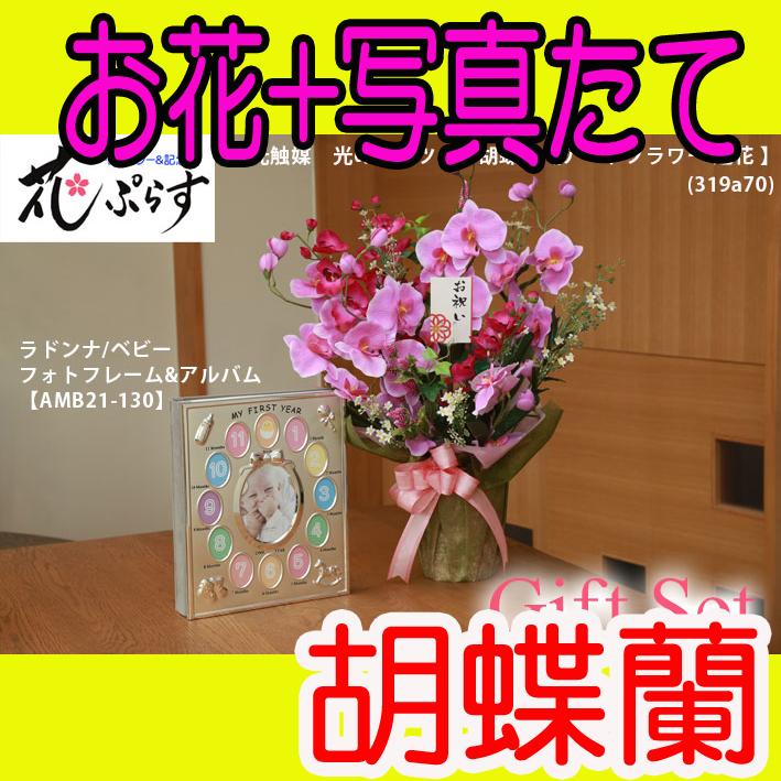 《誕生祝い》花ぷらす《ベビーフォトフレーム&アルバム》ツイン胡蝶蘭319a70-amb21-130ギフトセット