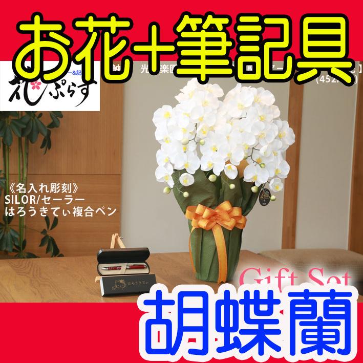 《退職記念品》花ぷらす《SILORハローキティ複合ペン》エレガント胡蝶蘭【ペン名入れ彫刻】452A80-kittyギフトセット