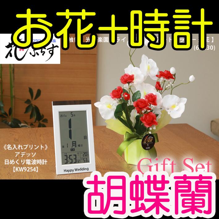 《新築祝い》花ぷらす《日めくり電波時計》ブライト胡蝶蘭64A30-KW9254ギフトセット(時計名入れプリント)
