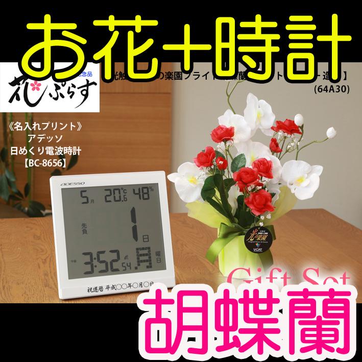 《退職祝い》花ぷらす《日めくり電波時計》ブライト胡蝶蘭64A30-bc8656ギフトセット(時計名入れプリント)