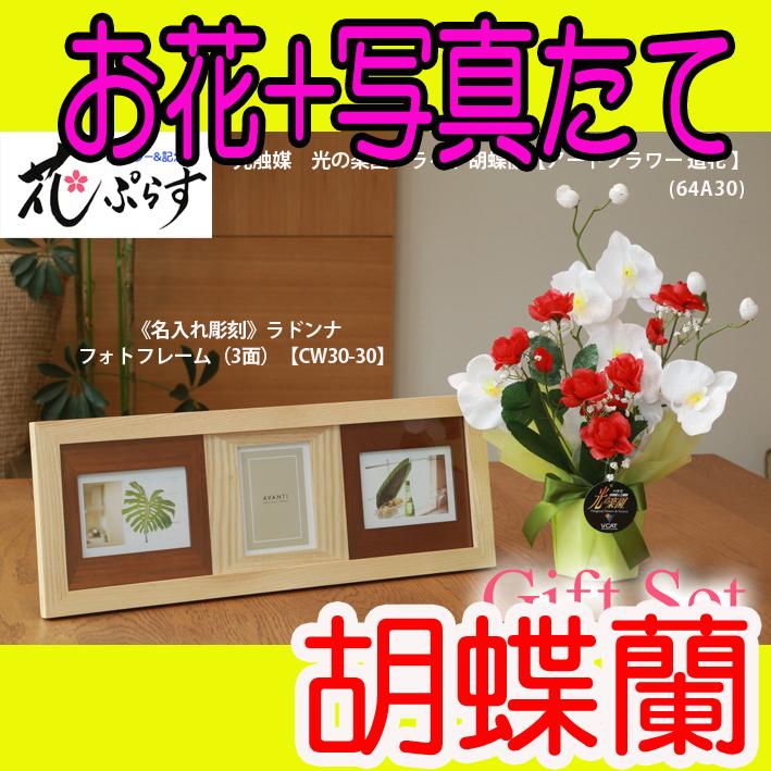 《出産祝い》花ぷらす《ウッドフォトフレーム(3面)》ブライト胡蝶蘭64A30-cw30-30ギフトセット(フレーム名入れ彫刻)