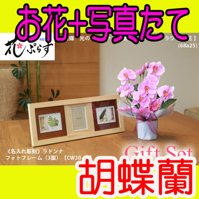 《出産祝い》花ぷらす《ウッドフォトフレーム(3面)》ファレノ胡蝶蘭68a25-cw30-30ギフトセット(フレーム名入れ彫刻)