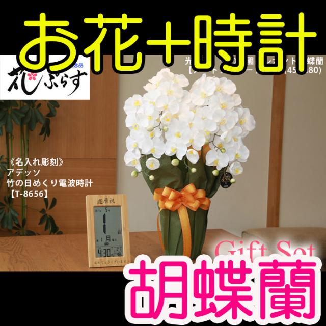 《新築お祝い》花ぷらす《竹の日めくり電波時計》エレガント胡蝶蘭452A80-T-8656ギフトセット(電波時計名入れ彫刻)