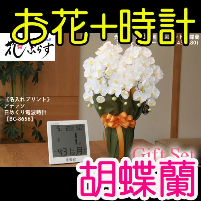 《新築祝い》花ぷらす《日めくり電波時計》エレガント胡蝶蘭452A80-bc8656ギフトセット(時計名入れプリント)