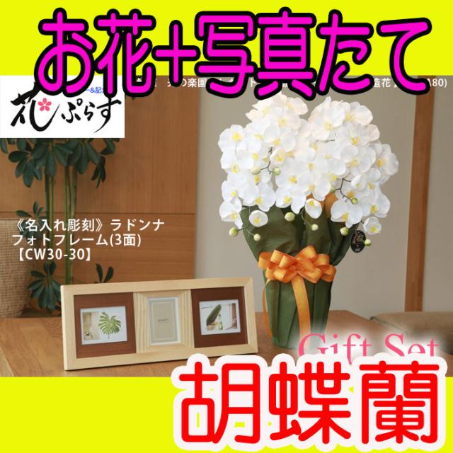 《出産祝い》花ぷらす《ウッドフォトフレーム(3面)》エレガント胡蝶蘭452A80-cw30-30ギフトセット(フレーム名入れ彫刻)