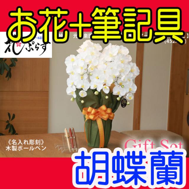 《退職祝い》花ぷらす《木製ボールペン》エレガント胡蝶蘭【ペン名入れ彫刻】452A80-mokupenギフトセット