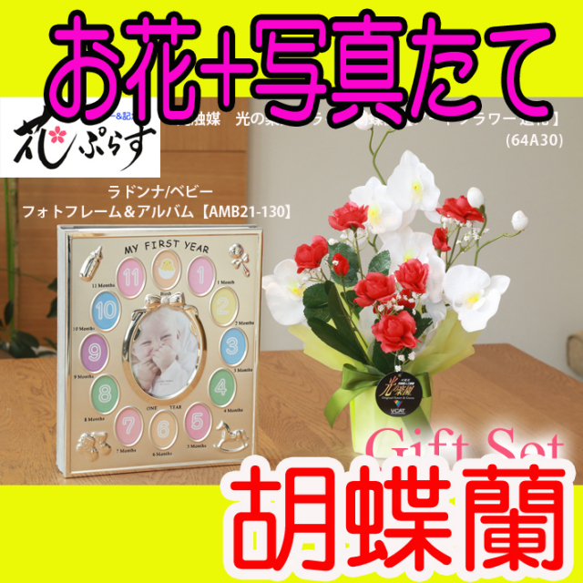 《出産祝い》花ぷらす《ベビーフォトフレーム&アルバム》ブライト胡蝶蘭64A30-amb21-130ギフトセット