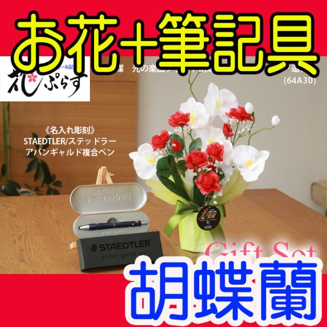 《退職祝い》花ぷらす《STAEDTLER複合ペン》ブライト胡蝶蘭【ペン名入れ彫刻】64A30-avantgardeギフトセット