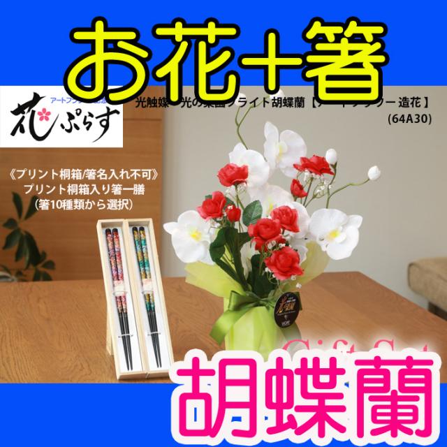 《還暦祝い》花ぷらす《桐箱入り箸一膳》ブライト胡蝶蘭箸10種類から選択64A30-hashi1ギフトセット(桐箱プリント)