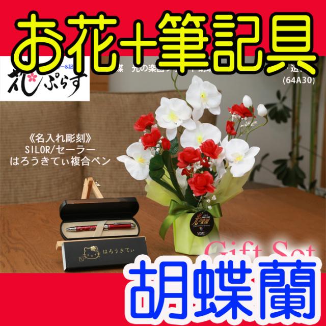 《退職記念品》花ぷらす《SILORハローキティ複合ペン》ブライト胡蝶蘭【ペン名入れ彫刻】64A30-kittyギフトセット